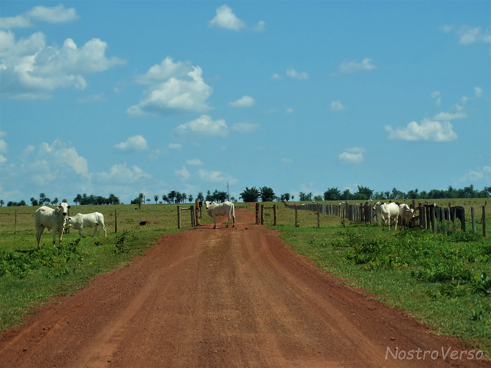 A caminho do Buraco das Araras