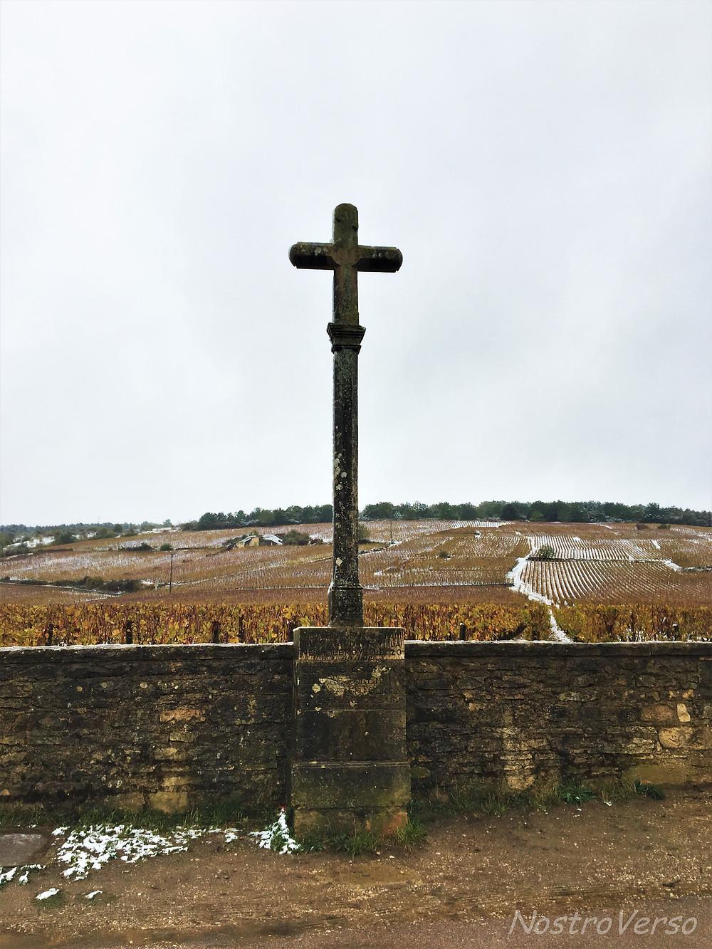 Vinhedo Romaneé-Conti na Borgonha