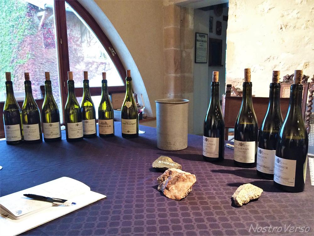Degustando os vinhos no Château de Beauregard - Fuissé