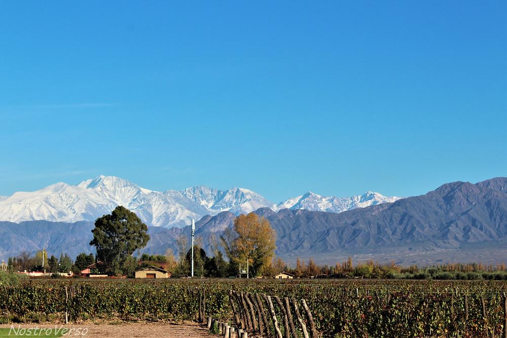 Bodega Vistalba em Mendoza