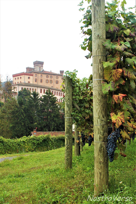 Barolo - Piemonte - Itália