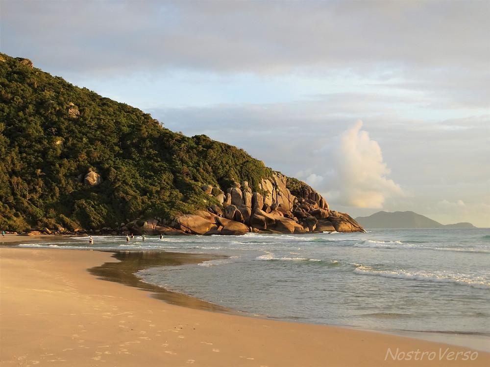 Praia Brava - Florianópolis