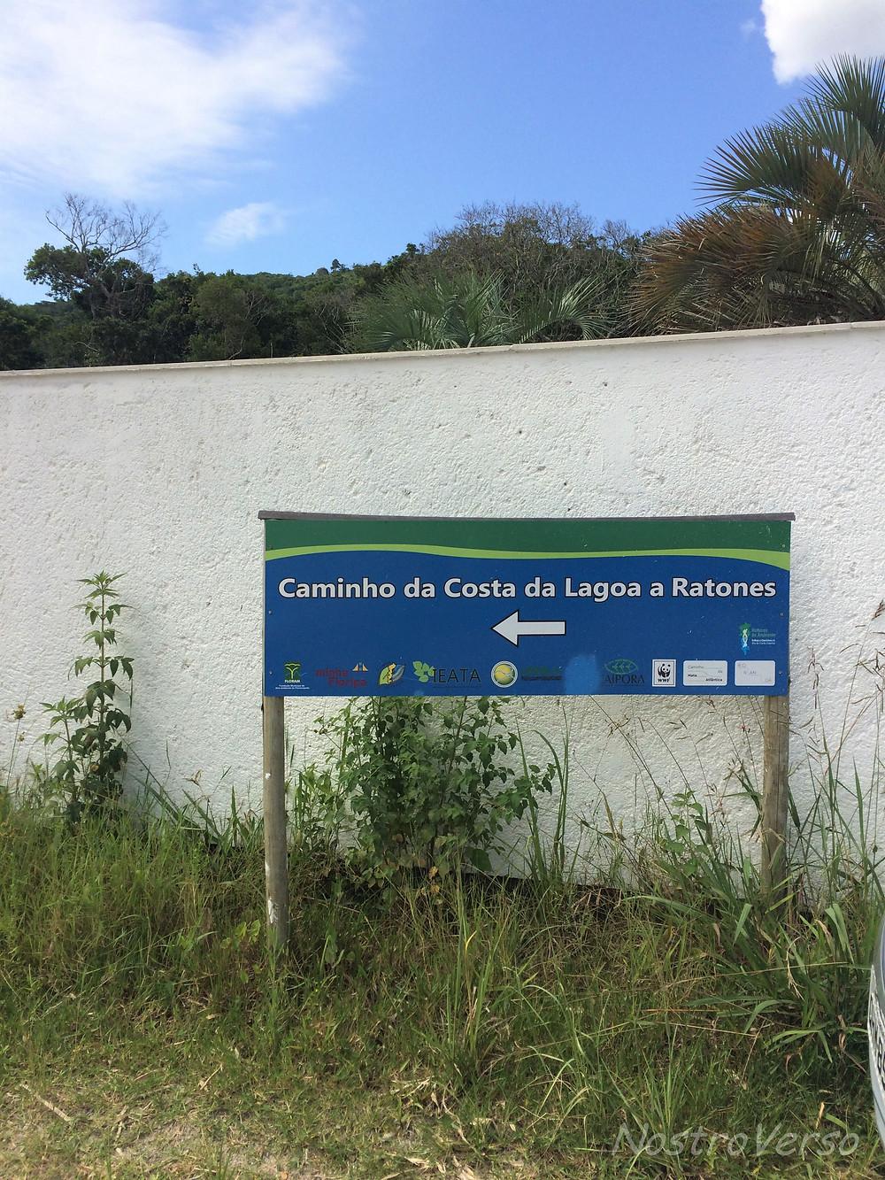 Trilha Ratones Costa da Lagoa