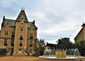 Explorando a Borgonha: do Escargot ao Grand Cru!
