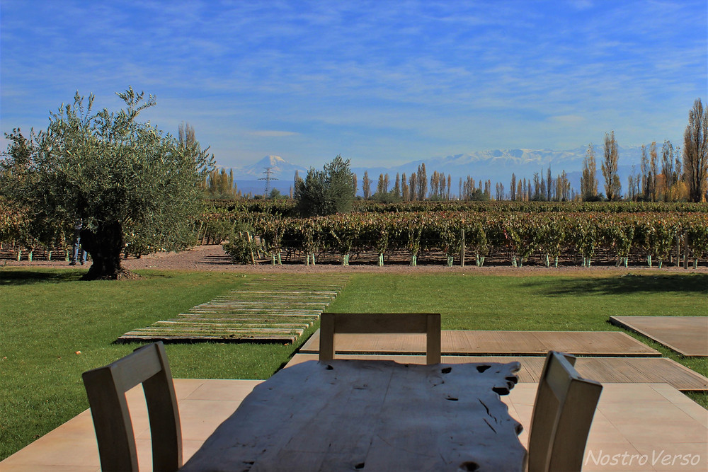 Bodega Matervini em Mendoza