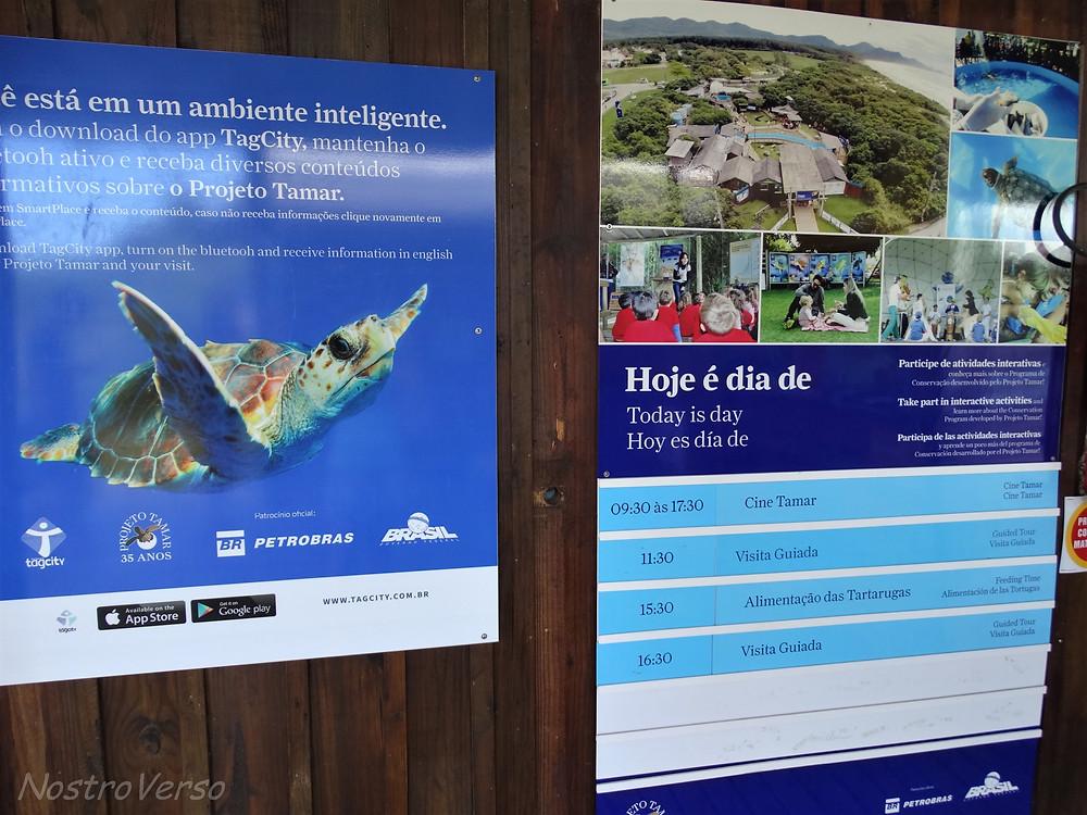 Programação - Projeto TAMAR - Florianópolis