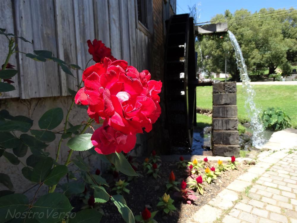 Casa da Erva-mate - Caminhos de Pedra