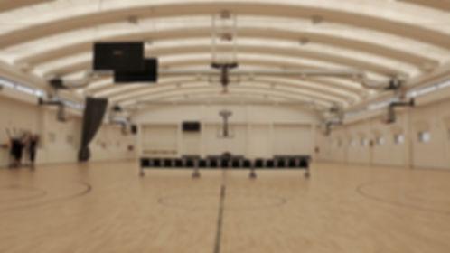 basketdome.jpg