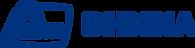Лого ВНИИА рус.png