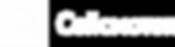 seismotech_logo_onecolor-white_rus_rgb.p