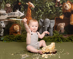 jungle-cake-smash-photoshoot-worksop-rot