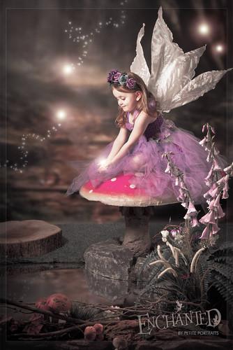 enchanted-fairy-photos-sheffield-rotherh