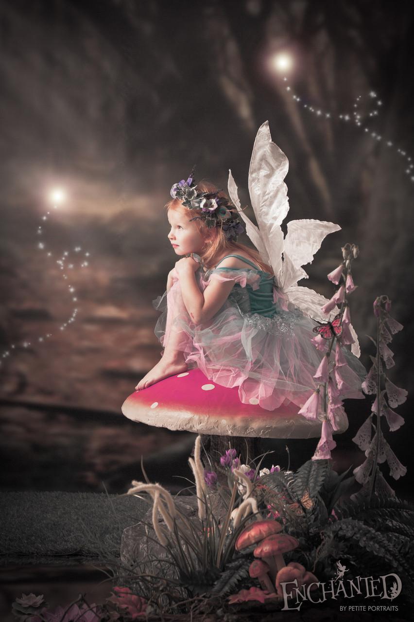 Enchanted-fairy-elf-worksop-rotherham-sheffield-photo-photoshoot-photographer-petite portraits photography-18 Petite Portraits