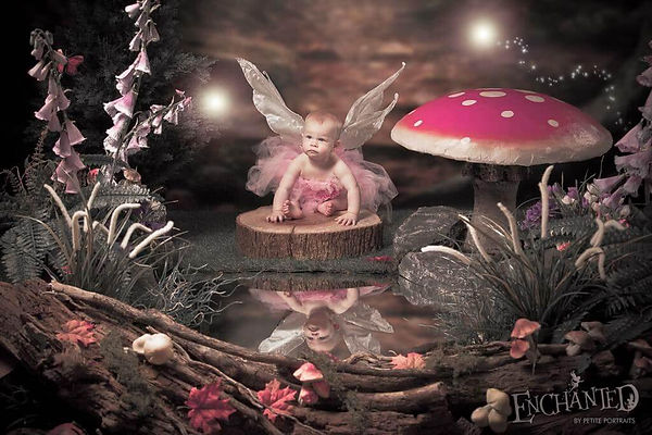 fairy-photos-doncaster-sheffield-chester