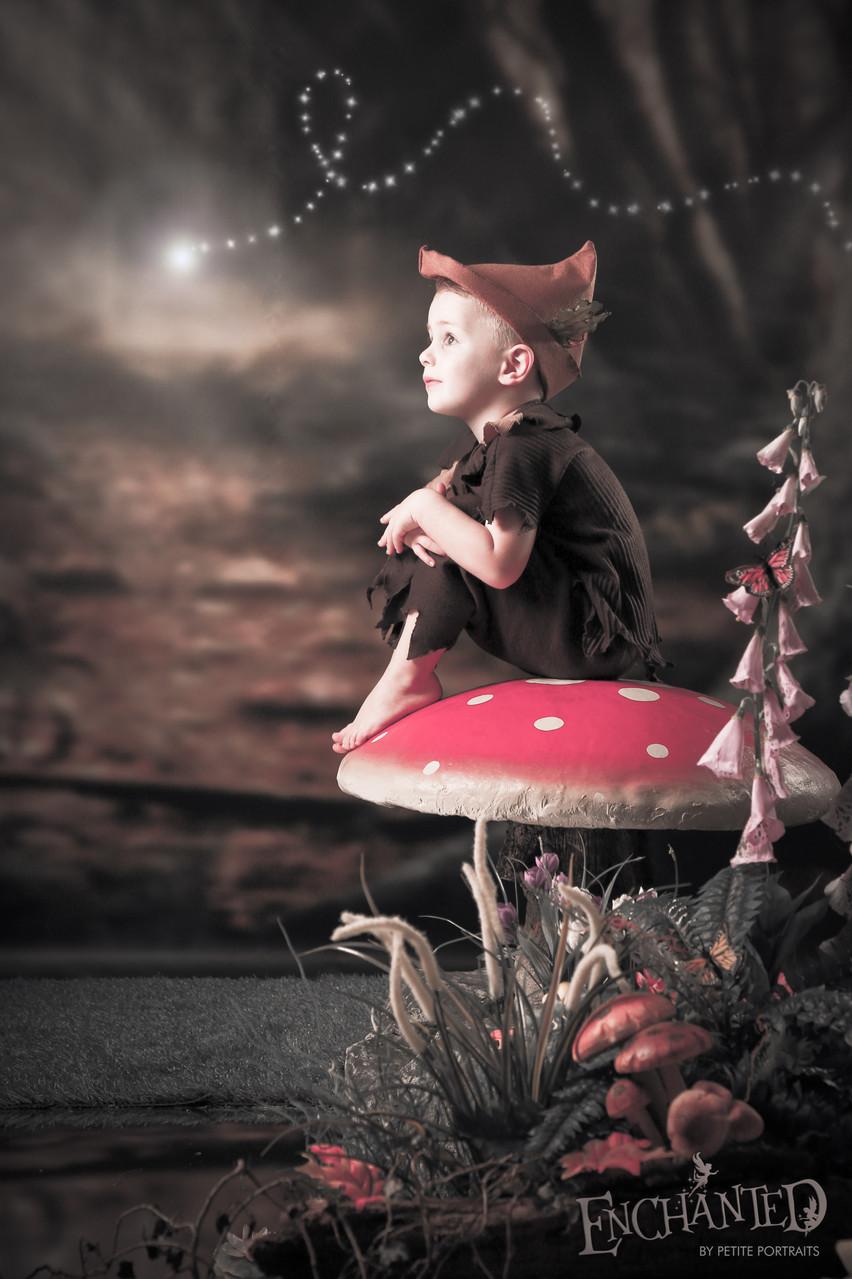 Enchanted-fairy-elf-worksop-rotherham-sheffield-photo-photoshoot-photographer-petite portraits photography-29 Petite Portraits