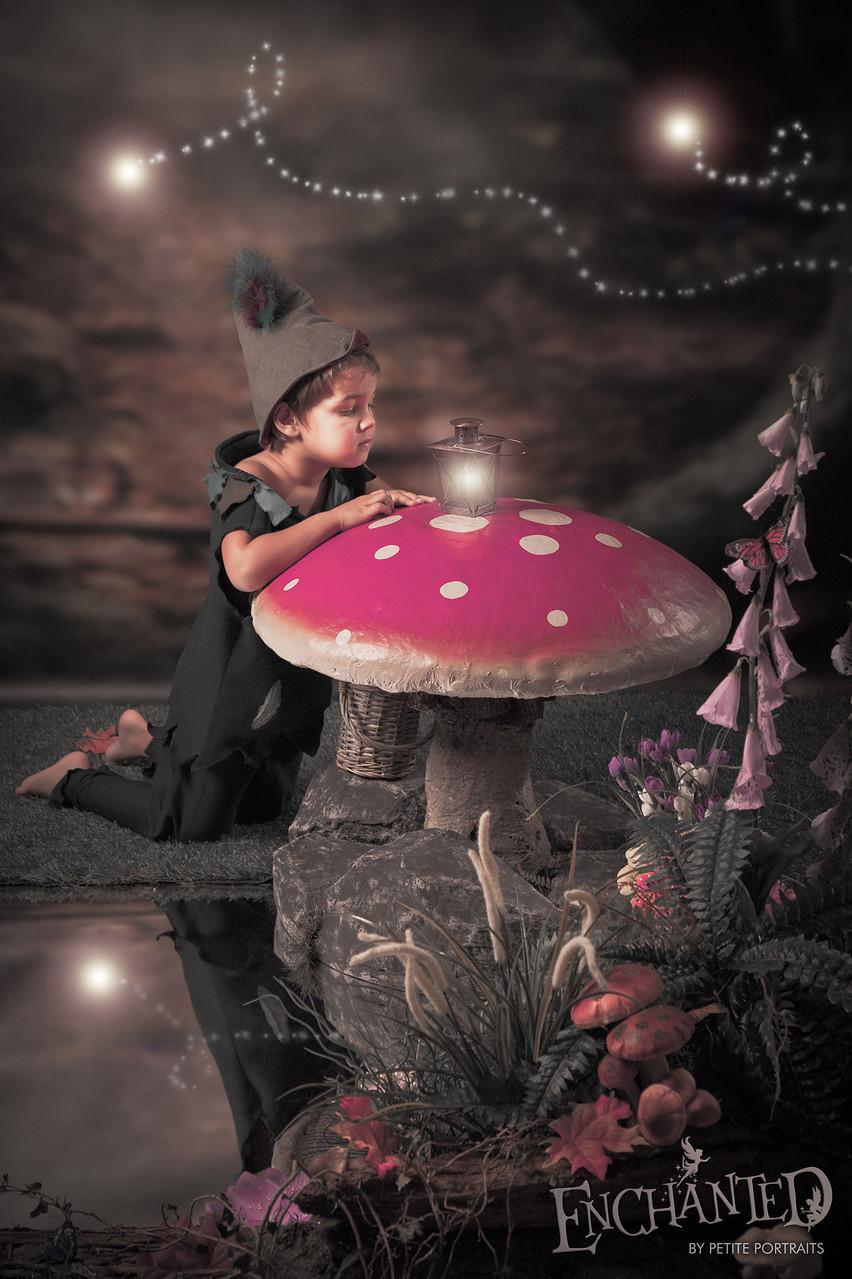 Enchanted fairy photoshoot-elf-worksop-rotherham-sheffield-petite portraits photography-20