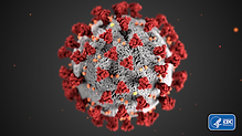 Image of COVID 19 virus