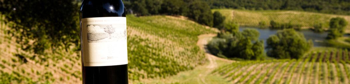 Vignoble Nappa Valley en Californie