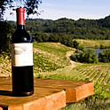 Stonestreet estate vineyards, CA (USA) - Cabernet Sauvignon