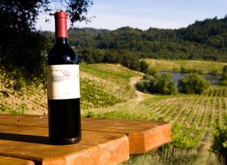 Northeast Georgia Wine Tours