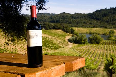 winery vineyard dallas ga paulding county
