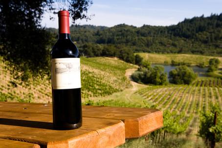 Italian Wine: Crash Course