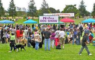 Niles Dog Show