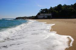 310+-+Plage+du+Racou,+Argeles+sur+Mer,+France,+Beach,+Sans,+Sable,+Vague,+Wave,+Mer,+Sea,+Ecume,+Nat