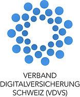 VDVS-Logo_Schrift-klein_edited_edited.jp