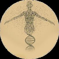 Service-Epigenetics.png