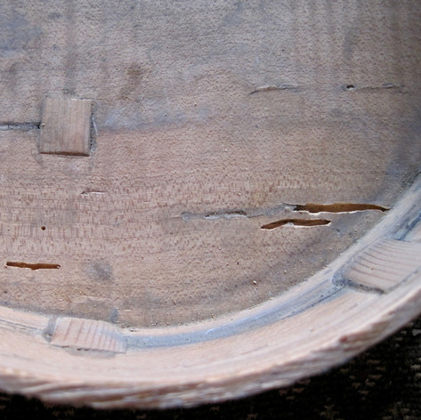 Worm Damage Restoration