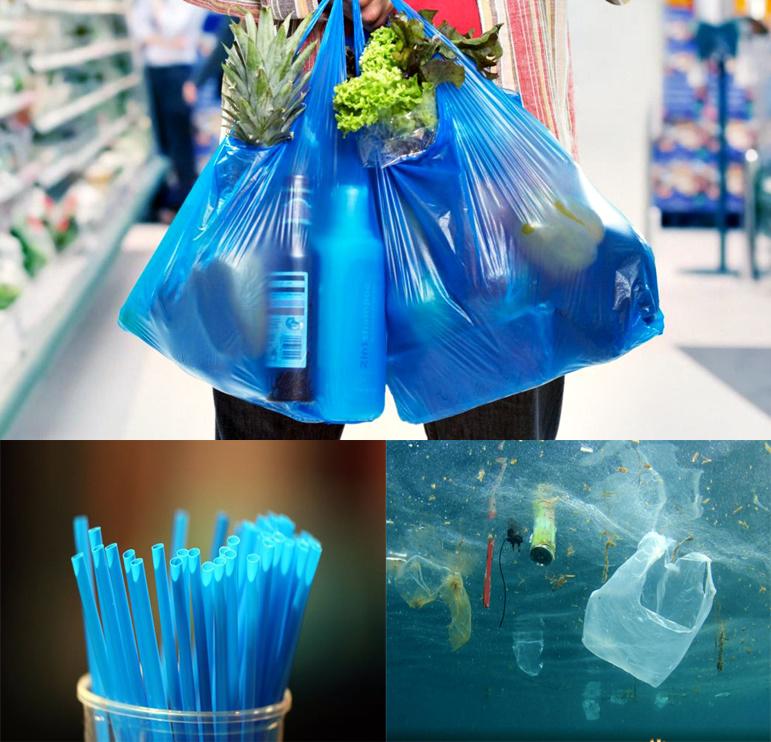 plastikamaisxrisis