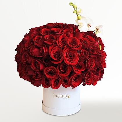 Redondo de rosas