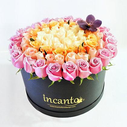Caja negra rosas cuatricolor