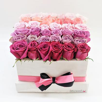 Rosas en caja blanco