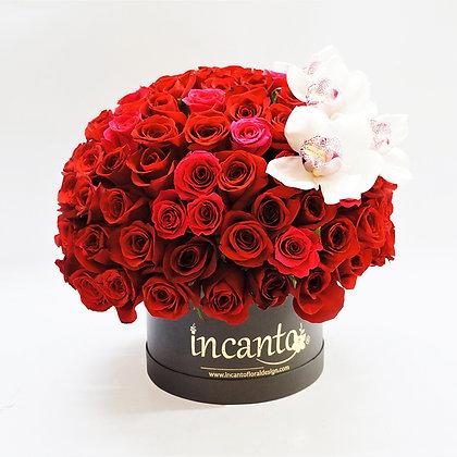 Caja negra con rosas plus