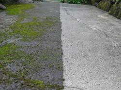 Concrete.18693512_std