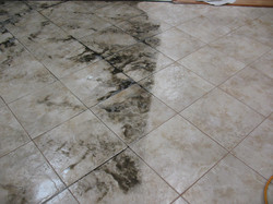 tile_grout_cleaning_santa_rosa