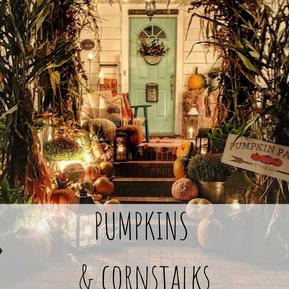 PUMPKINS & CORNSTALKS