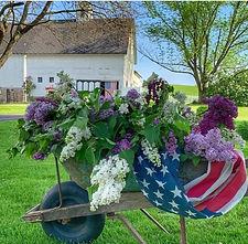 wheelbarrow2_edited.jpg