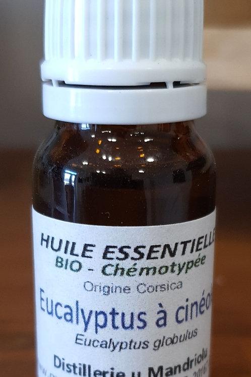 Huile essentielle eucalyptus 10ml