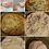 Thumbnail: Migliacci  x 4 au fromage frais fermier environ 240g