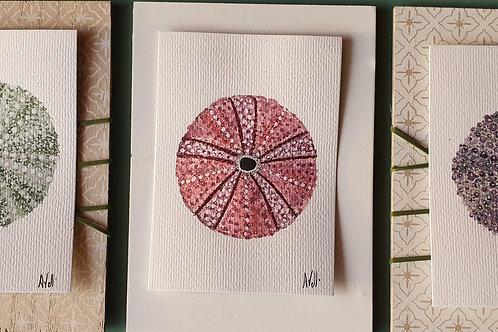 Oursins aquarelle triptyque  (3x(10×15))