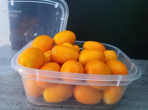 Kumquats non traités environs 150g