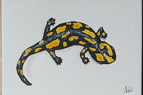 Salamandre aquarelle l'unité (10×15))