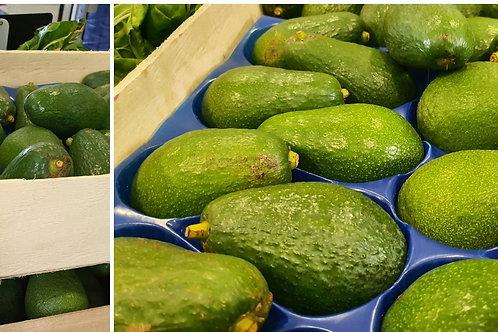 Avocats bio ( prix au kilo)