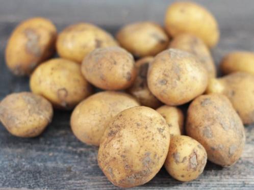Pomme de terre grenailles non traitées 500gr