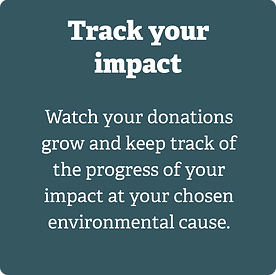 track your impact hover@2x.png