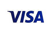 Visa logo box.png