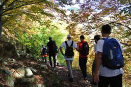 EAL_Trekking_In cammino_Bosco.JPG